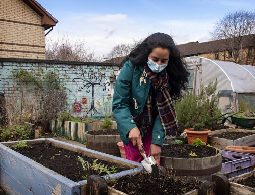 WSREC: Supporting minority ethnic communities in the West of Scotland to reduce carbon footprint